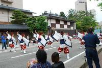 yosakoiblog-2.jpg