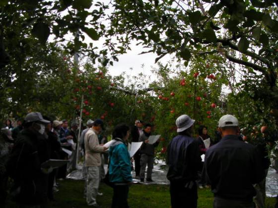 長野県果樹研究会のふじ高品質生産現地検討会