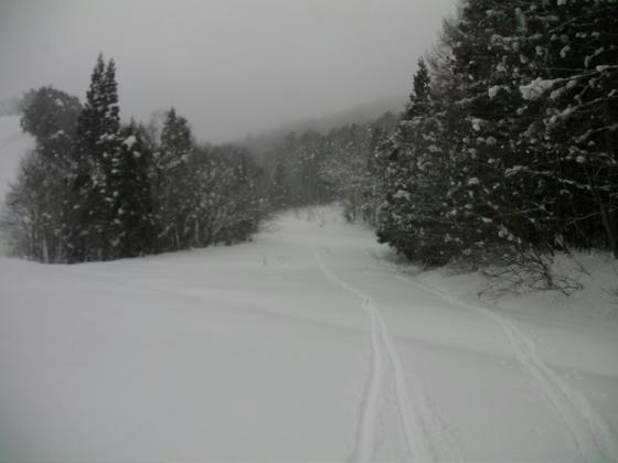14:36 ボトム近くもふかふかだったが斜度が無く直滑降。右が登りの跡、左が滑走跡