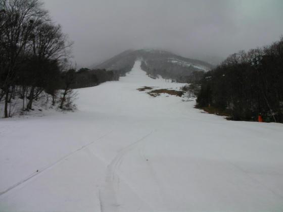 1237 サンシャインG(中部)とサミットC(上部)方向。今日は滑れませんorz
