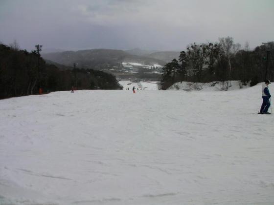 1237 フォレストC滑り出し。右端にパーク有り