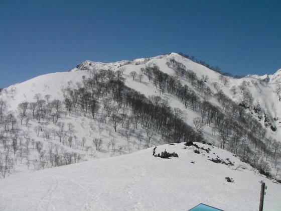 1033 五竜岳への登山道。小遠見、大遠見辺りまでは登ってみたいなぁ・・・
