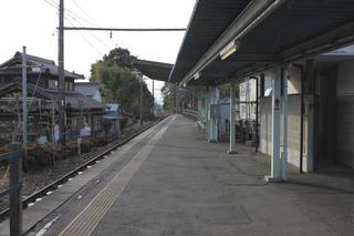 20110123192.jpg
