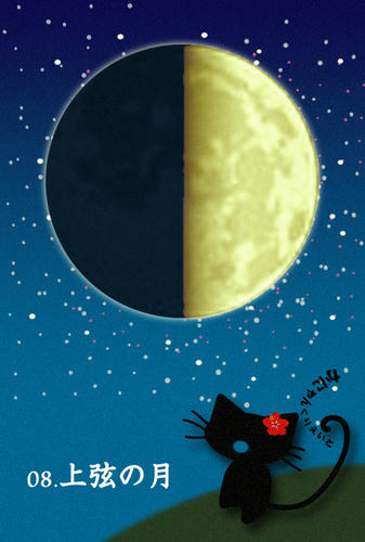 00.上弦の月