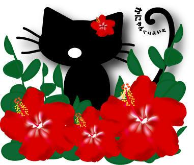 ハイビスカス猫