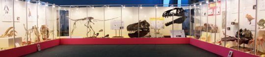 佐賀県立宇宙科学館『恐竜展2』その2