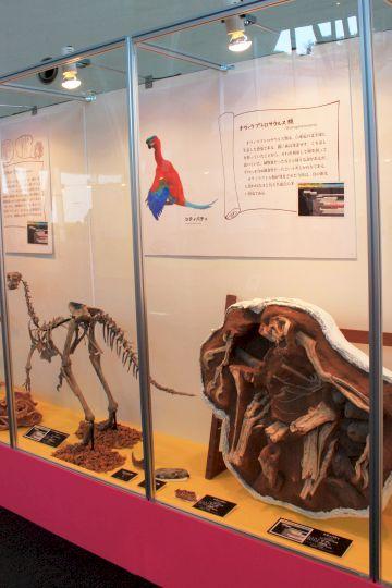 佐賀県立宇宙科学館『恐竜展2』その8
