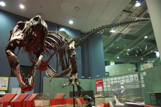 ティラノサウルス その1