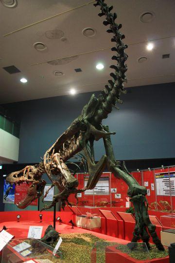 ティラノサウルス その2