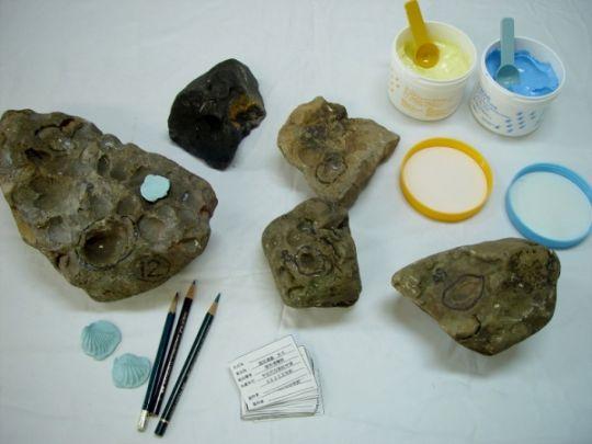 化石レプリカ作り体験