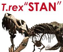 ティラノサウルス全身骨格標本レンタル