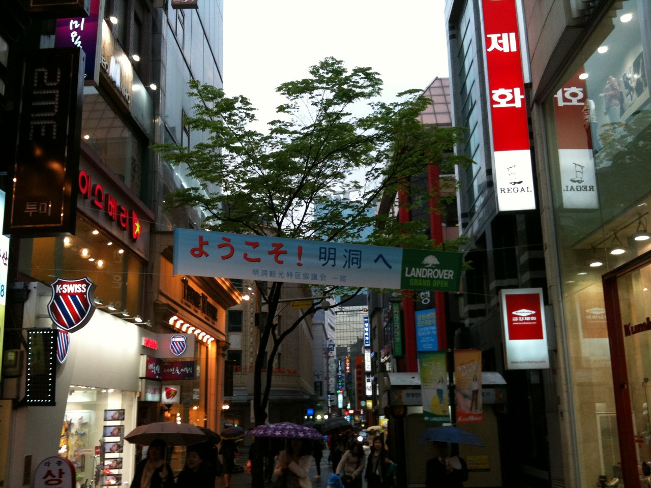 20100428_korea05.jpg