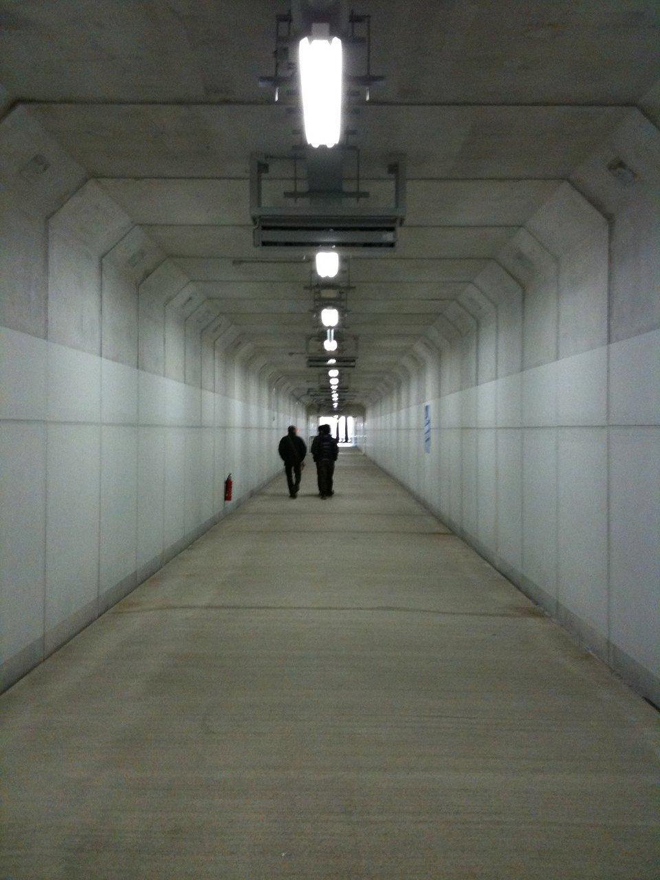 20110212_suzukacircuit_17.jpg