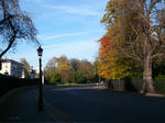 Regent Park2
