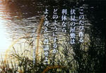 94b29004.jpeg