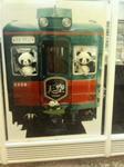 パンダ電車☆