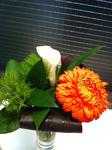 げんきが出るお花