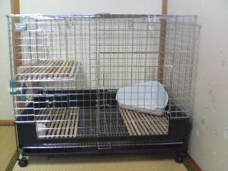 cage070801_1812~01.jpg