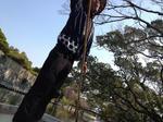 blog_12133101.JPG