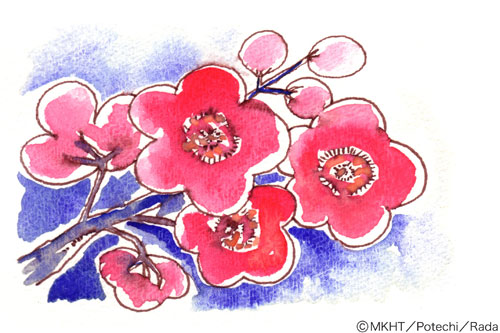 http://blog.cnobi.jp/v1/blog/user/7170818ba3679a9c8a30a9deff30364e/1219285299