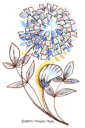 http://file.tanakaharuo.blog.shinobi.jp/0140.jpg
