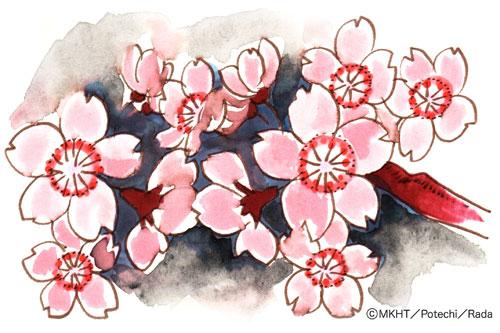 http://file.tanakaharuo.blog.shinobi.jp/0148.jpg