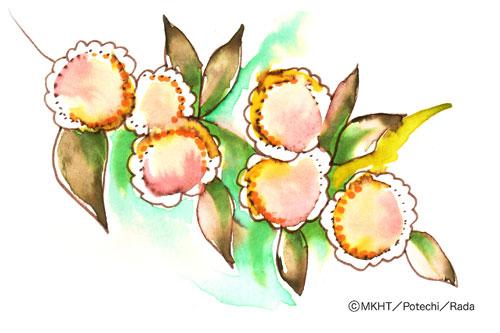 http://file.tanakaharuo.blog.shinobi.jp/0146.jpg
