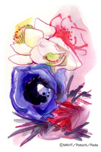 http://file.tanakaharuo.blog.shinobi.jp/0165.jpg