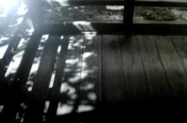 京都での1枚。