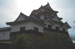 hikonejyou3.jpg