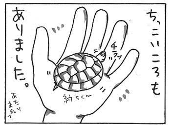 112b.jpg
