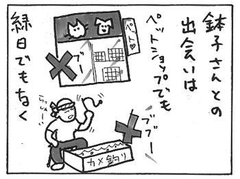 112c.jpg