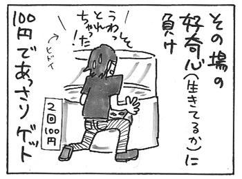 114c.jpg