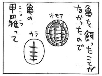 115a.jpg