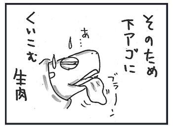 1120c.jpg