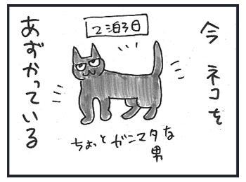 0224a.jpg