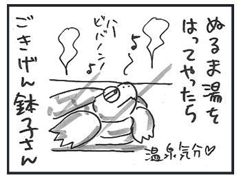 0228b.jpg