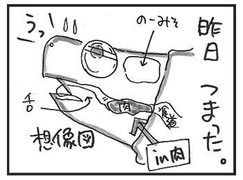 0308b.jpg