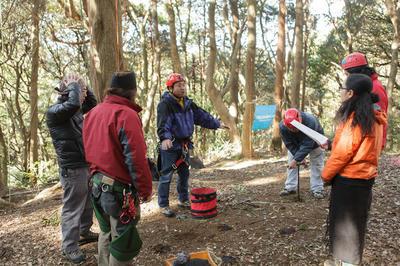 ツリークライミング樹木医