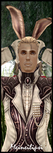 奴梅洛斯(廢材老爸阿奴,自從老婆跑了之後,自己獨立養大女兒,最後與女兒加入本家族....話雖如此,他的等級還是比女兒低(噴)