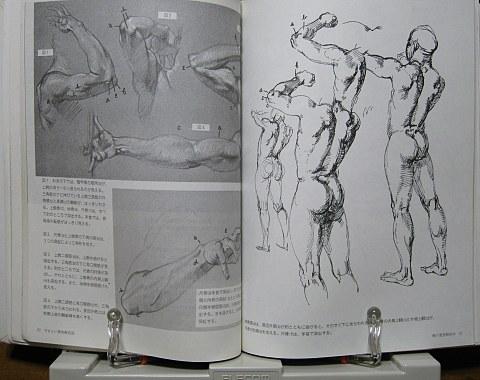 やさしい美術解剖図中身03
