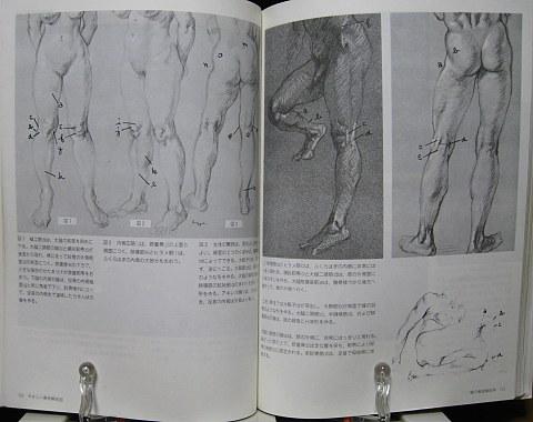 やさしい美術解剖図中身05