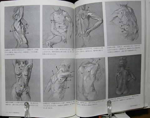 やさしい美術解剖図中身06