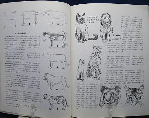 動物の描き方中身03