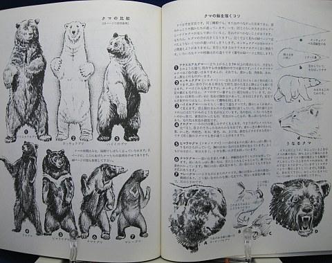動物の描き方中身04