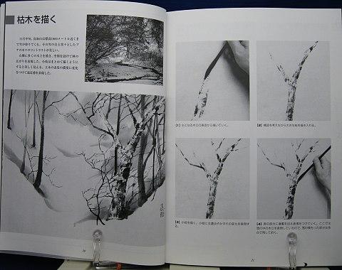 ダイナミックに描く山水画中身01
