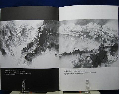 ダイナミックに描く山水画中身08