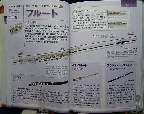 楽器の事典中身04