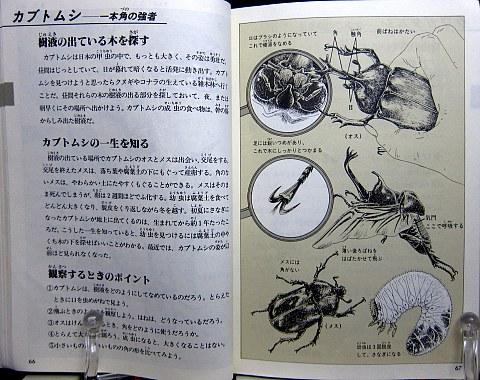 自然図鑑中身01
