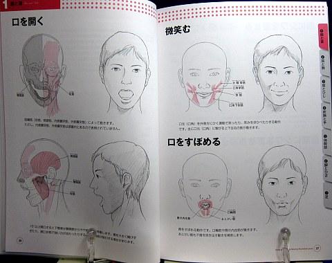 骨と筋肉がわかる人体ポーズ集中身01